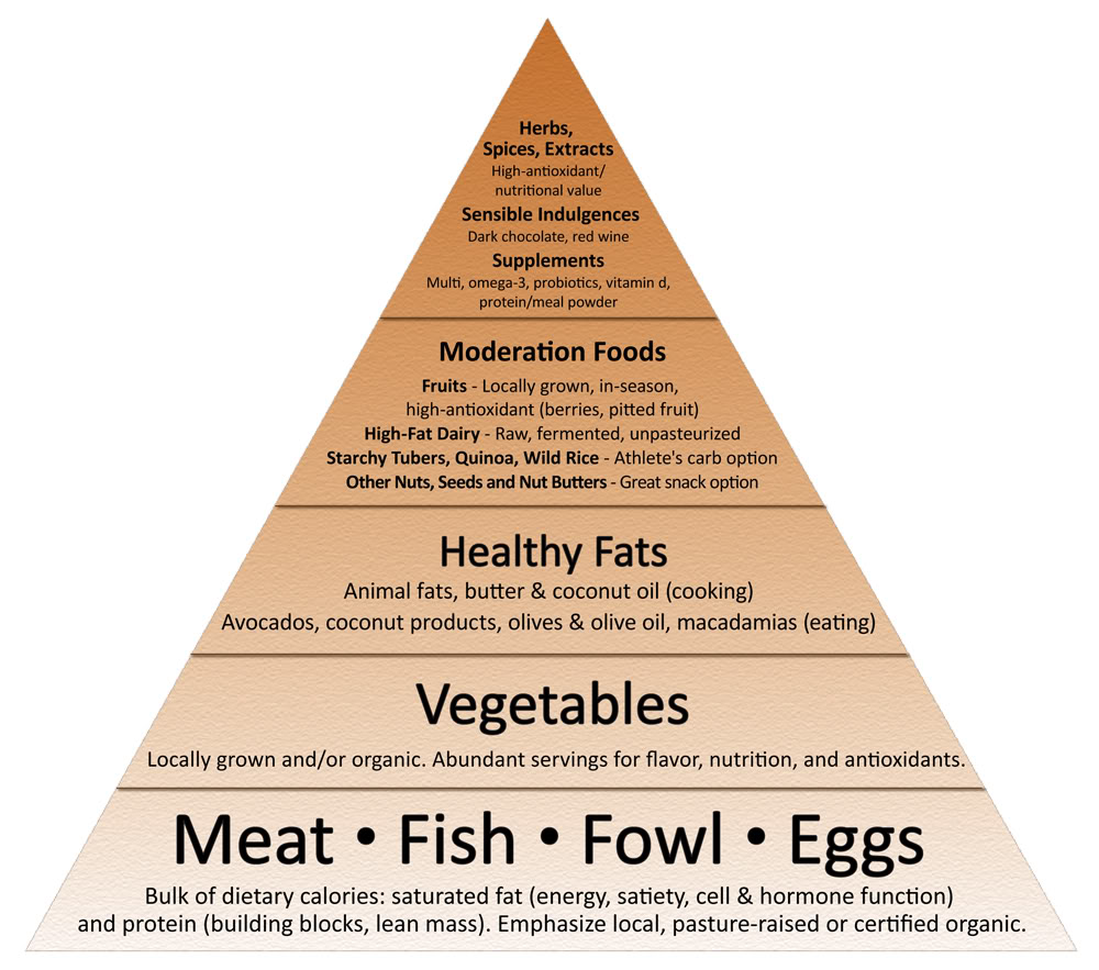 food pyramid sisson